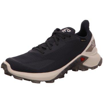 Salomon Sneaker Low schwarz