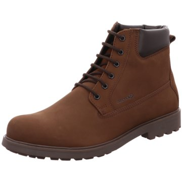 Geox Boots Collection braun