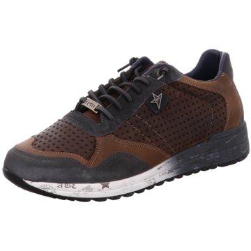 Cetti Sneaker Low braun