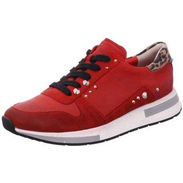 Paul Green Sneaker LowSneaker rot