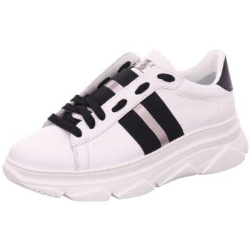 Stokton Sneaker World weiß