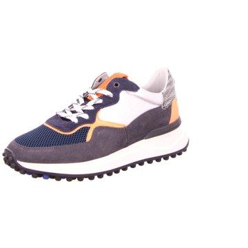 Floris van Bommel Sneaker Low -