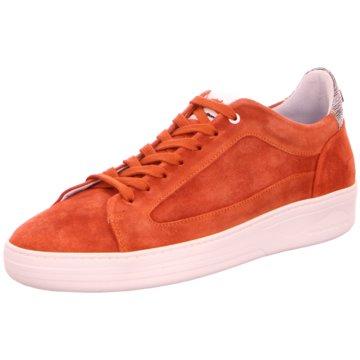 Floris van Bommel Sneaker Low rot