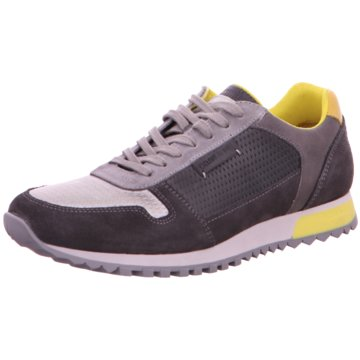 Cycleur de Luxe Sneaker Low grau