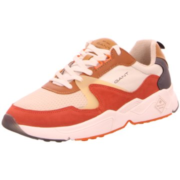 Gant Sneaker Low beige