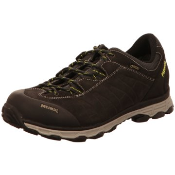 Meindl Outdoor SchuhASTI GTX - 5294 braun