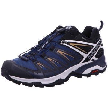 Salomon Outdoor SchuhSchuhe X ULTRA 3 GTX Sargasso S/Dar blau