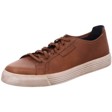 the best attitude 6c933 f95a1 camel active Sneaker Low braun