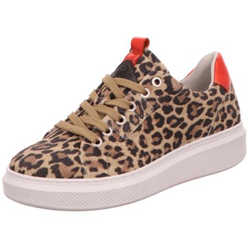 Bullboxer Sneaker World animal