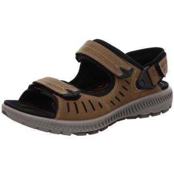 Ecco Komfort Sandale braun