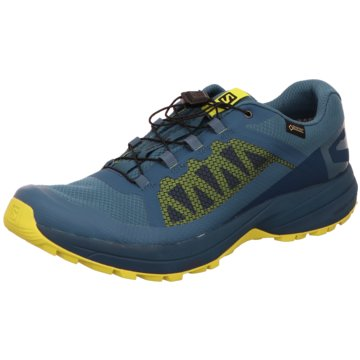 Salomon Trailrunning blau