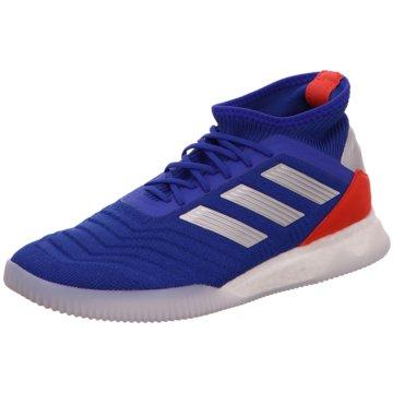 adidas Hallen-SohlePredator Tango 19.1 Boost TR blau