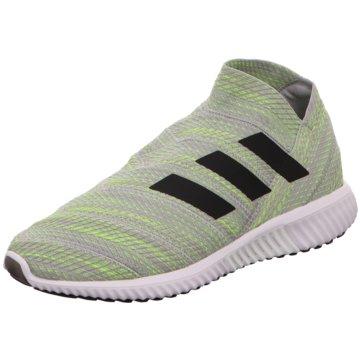 adidas TrainingsschuheNemeziz Tango 18.1 TR grün