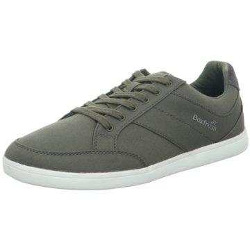 Boxfresh Sneaker für Herren online kaufen |