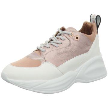 Alexander Smith Plateau Sneaker rot