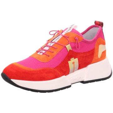 Donna Carolina Top Trends Sneaker rot
