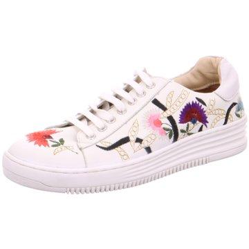 Damen Sneaker im Sale jetzt reduziert online kaufen |
