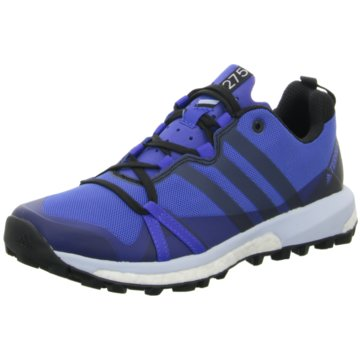 adidas Outdoor SchuhTerrex Agravic Boost Women blau
