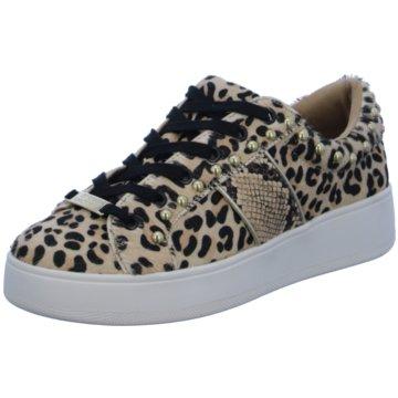 Steve Madden Sneaker animal