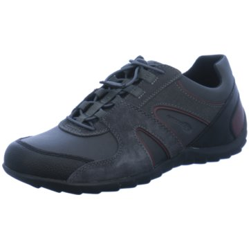Geox Komfort Schnürschuh grau