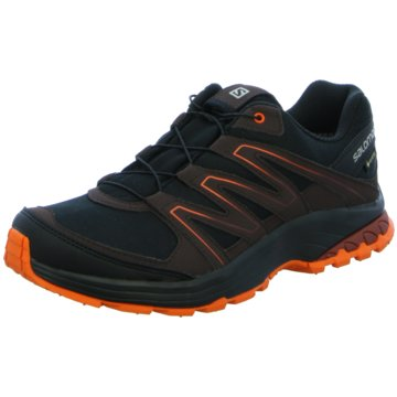 Salomon Running schwarz