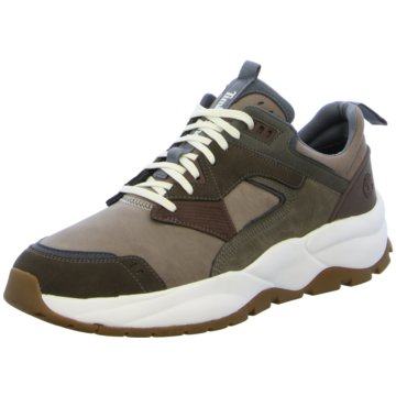 Timberland Sneaker Low oliv