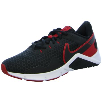 Nike TrainingsschuheLEGEND ESSENTIAL 2 - CQ9356-005 schwarz