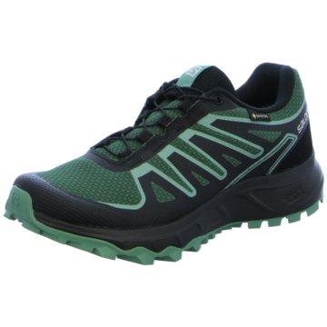 Salomon TrailrunningLIONEER GTX W - L41332700 grün