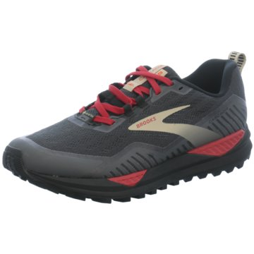 Brooks TrailrunningCASCADIA GTX 15 - 1103411D075 grau
