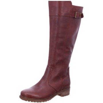 huge selection of 8735f b02f8 ARA Stiefel für Damen online kaufen | schuhe.de