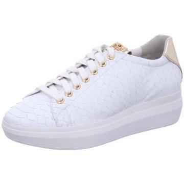low priced fc496 80982 Högl Schuhe jetzt im Online Shop günstig kaufen | schuhe.de
