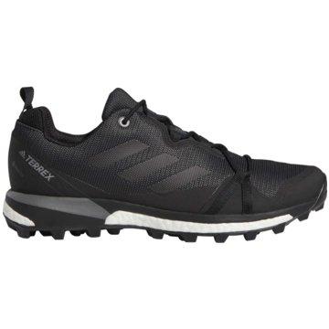 adidas TrailrunningTerrex Skychaser LT Boost GTX schwarz