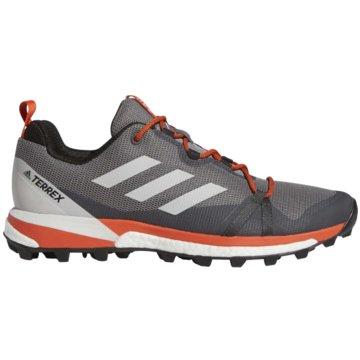 adidas TrailrunningTerrex Skychaser LT Boost -