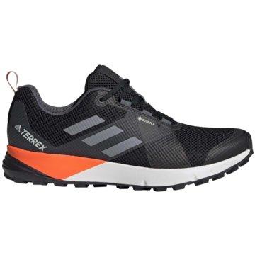 adidas TrailrunningTerrex Two GTX -