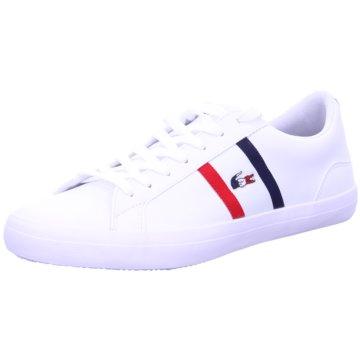 Lacoste Sneaker Low -
