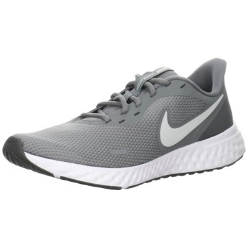 Nike RunningREVOLUTION 5 - BQ3204-005 grau