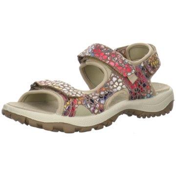 Salamander Outdoor Schuh beige