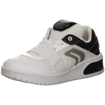 Geox Sneaker HighSneaker weiß