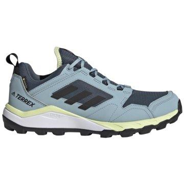 adidas TrailrunningTERREX AGRAVIC TR GORE-TEX TRAILRUNNING-SCHUH - EF6882 blau