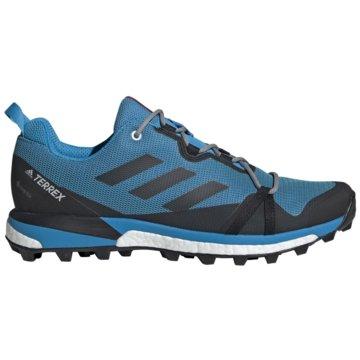 adidas TrailrunningTerrex Skychaser LT Boost GTX -