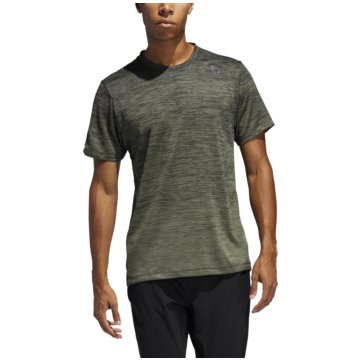 adidas T-ShirtsGRADIENT TEE - FL4398 oliv