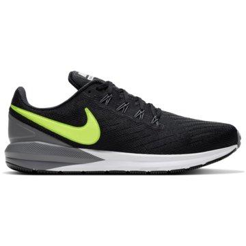 Nike RunningNIKE AIR ZOOM STRUCTURE 22 - CW2641-001 schwarz