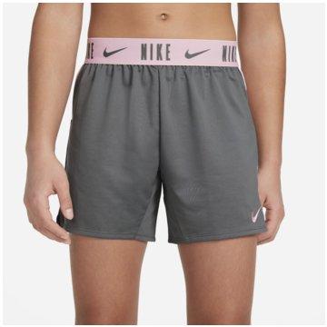 Nike Kurze SporthosenDRI-FIT TROPHY - DA1099-086 -