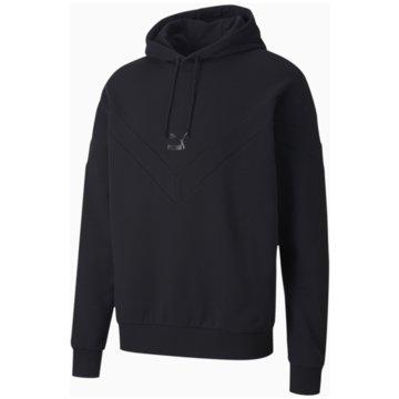 Puma SweatshirtsIconic MCS Hoodie schwarz