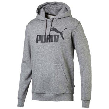 Puma HoodiesEssentials Big Logo Hoodie -