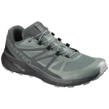 Salomon TrailrunningSense Ride GTX Iinvisible Fit grau