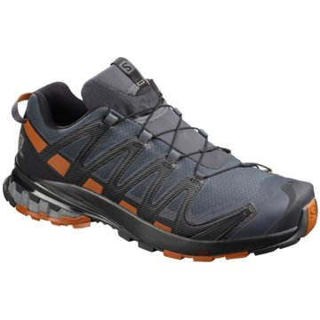 Salomon TrailrunningXA PRO 3D V8 GTX WIDE EBONY/ - L41042800 grau