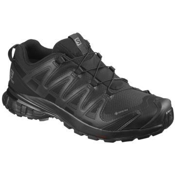 Salomon Outdoor SchuhXA Pro 3D v8 GTX Wide schwarz