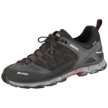 Meindl Outdoor SchuhLite Trail GTX - 3966 grau
