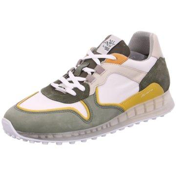 Ambitious Sneaker Low grün